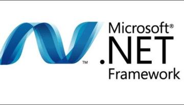 Check Net Framework Version